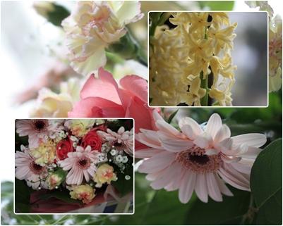 春分の日_f0007106_15313647.jpg