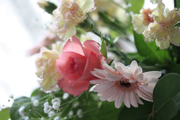春分の日_f0007106_15345058.jpg