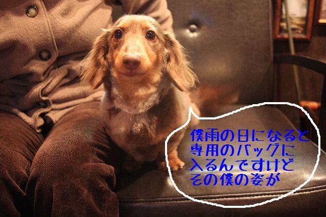 b0130018_10125352.jpg