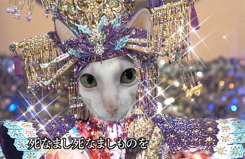 jaga_sachiko_e0048332_0304881.jpg