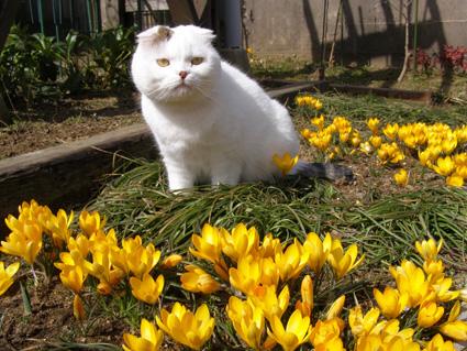 FRI  23  MARCH  2012_a0099744_14115893.jpg