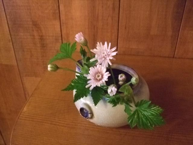 オークリーフ(吉川桜)_f0049672_13534120.jpg
