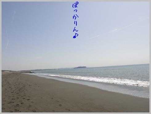 f0164479_23133946.jpg