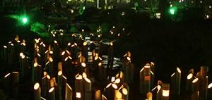 東山・花灯路2012⑤ 艶やか美の競演♪_b0067283_15494135.jpg