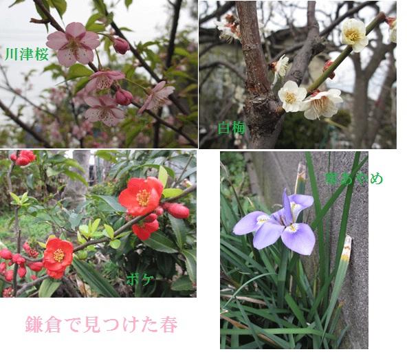 f0110488_234759.jpg