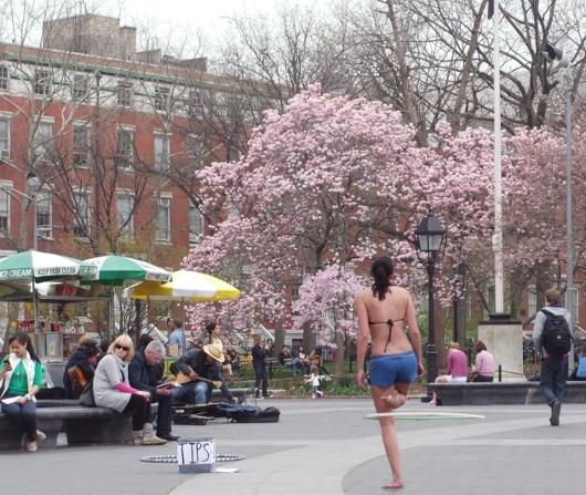 すっかり春らしくなったニューヨークの公園風景_b0007805_227365.jpg