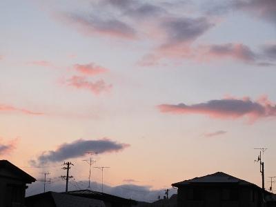 2012年3月23日_c0241324_12253817.jpg