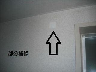 f0031037_2056711.jpg