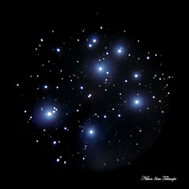 早春の散開星団(その1-M45スバル星団)_b0167343_143358.jpg