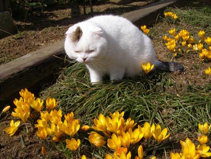 FRI  23  MARCH  2012_a0099744_10242146.jpg