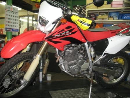 XR250 AIキャンセル!_e0114857_8595021.jpg