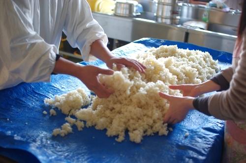 味噌作り2012 1日目~米を蒸して種付け、豆を洗って浸す~_c0110869_7491359.jpg