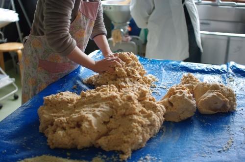 味噌作り2012 3日目~米麹の塩切り、大豆をすりつぶす、味噌玉~_c0110869_759123.jpg
