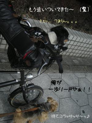 b0249672_1629527.jpg