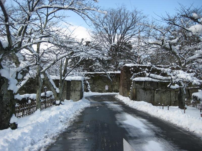 会津で正月(7)雪の鶴ヶ城 _c0013687_20411670.jpg
