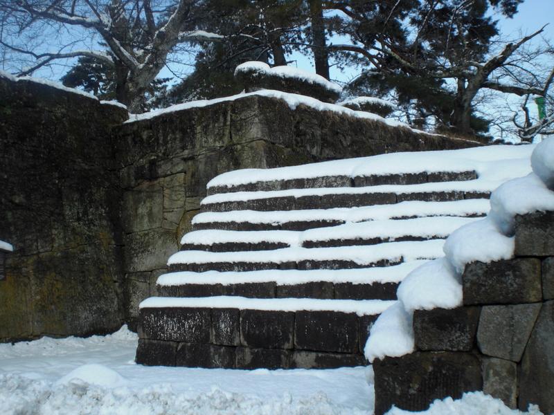 会津で正月(7)雪の鶴ヶ城 _c0013687_20412566.jpg