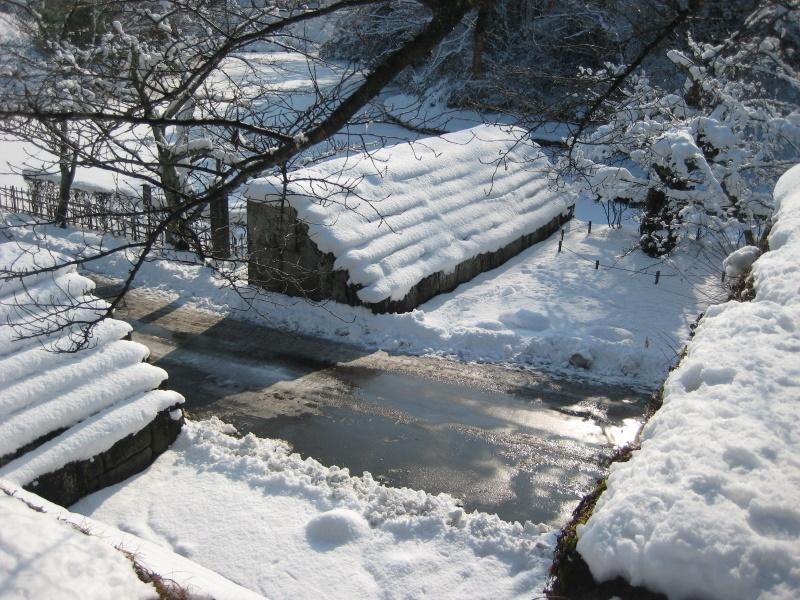 会津で正月(7)雪の鶴ヶ城 _c0013687_20414587.jpg