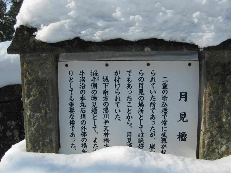会津で正月(7)雪の鶴ヶ城 _c0013687_20445187.jpg
