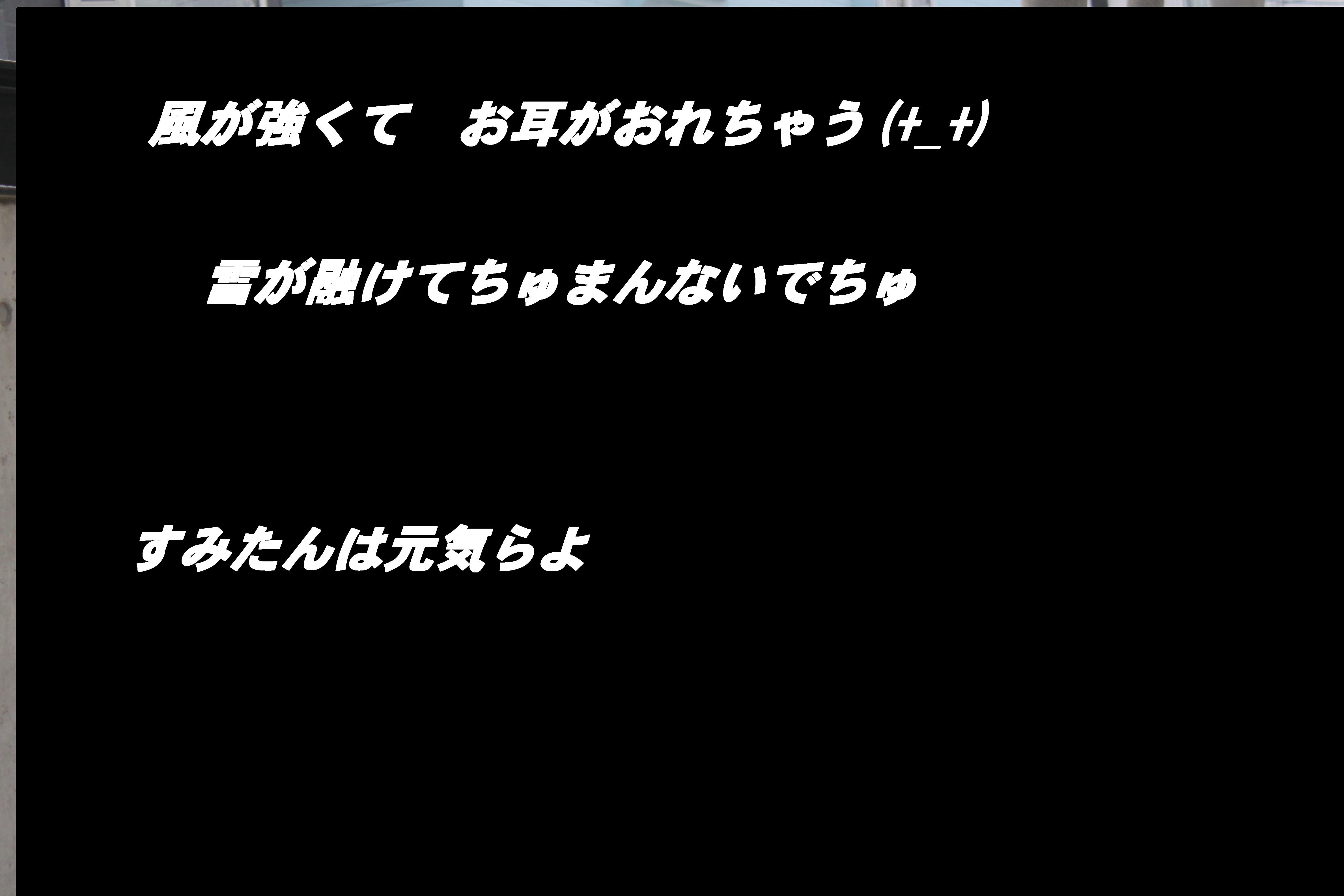 b0217298_15434818.jpg