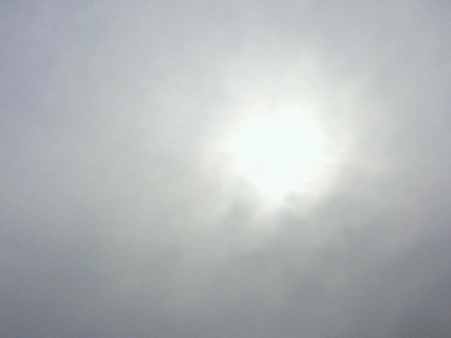 曇り空のお彼岸明け_c0140599_1153261.jpg