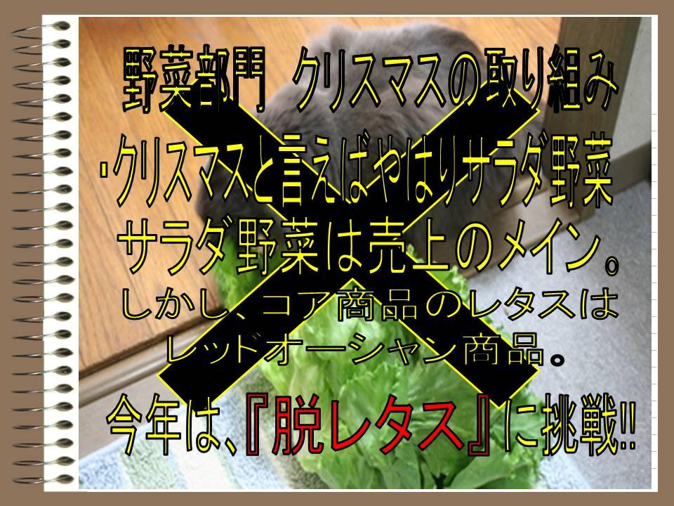 f0070004_13552057.jpg