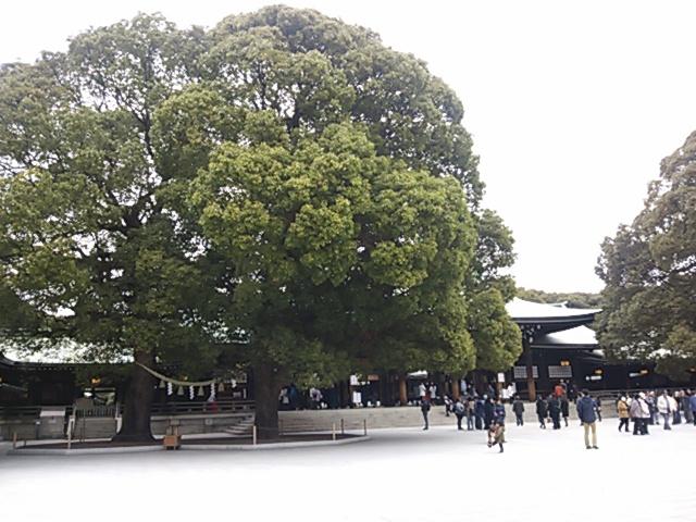 東京一日散歩_b0077251_16413754.jpg