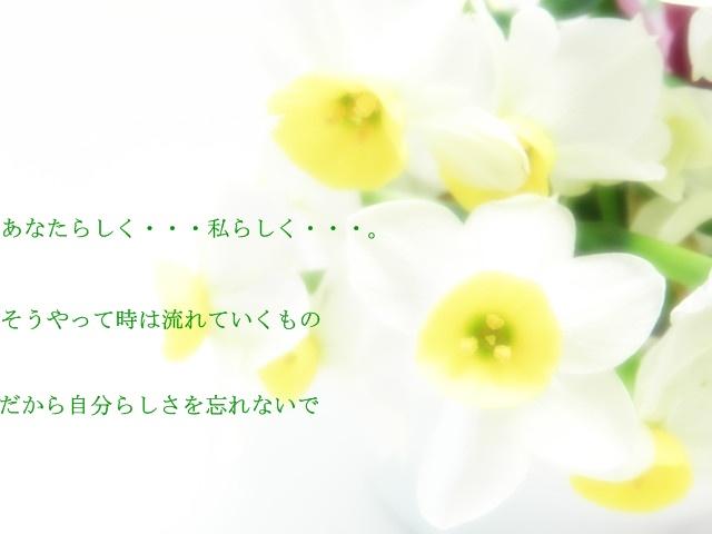 d0199578_16332795.jpg