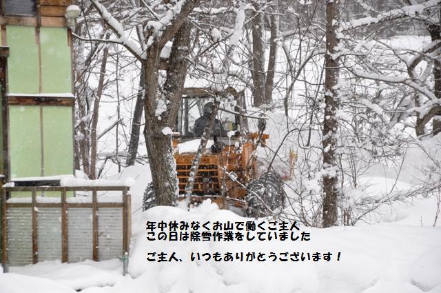 f0212597_1127508.jpg