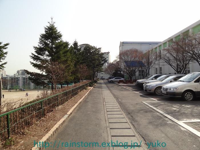 RAIN26日ソウル平和音楽会公知でました。ソウルお土産続き・・_c0047605_14280.jpg