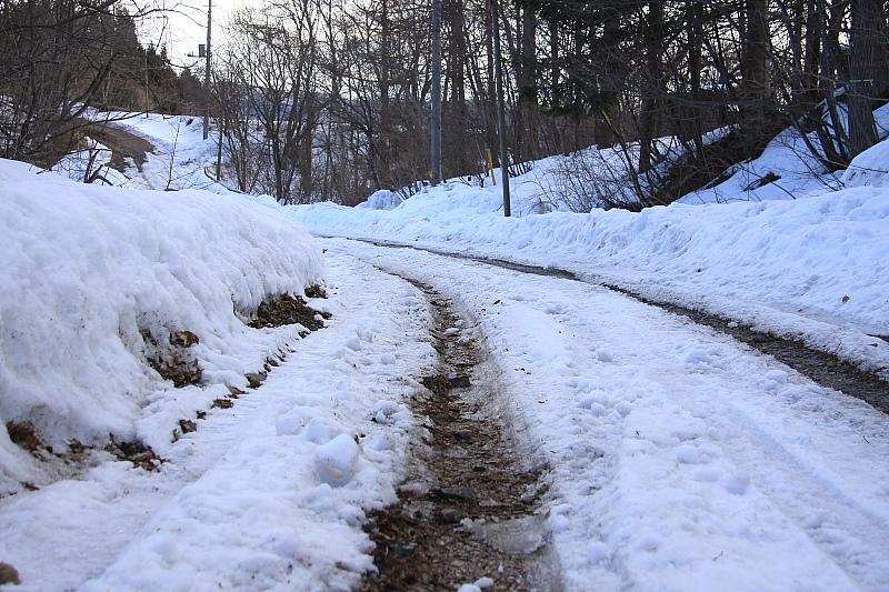 山は冬景色 - 2012年早春・上越線 -_b0190710_15422443.jpg