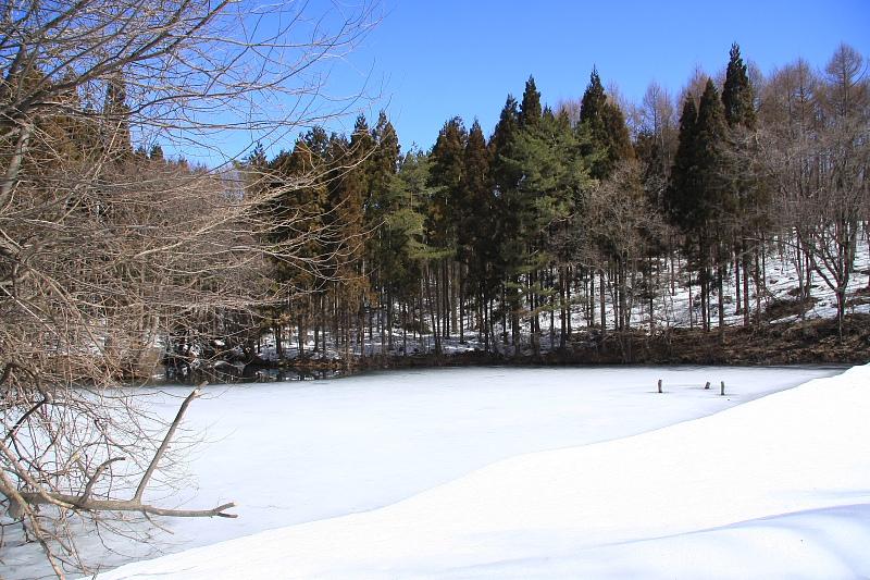 山は冬景色 - 2012年早春・上越線 -_b0190710_15432058.jpg