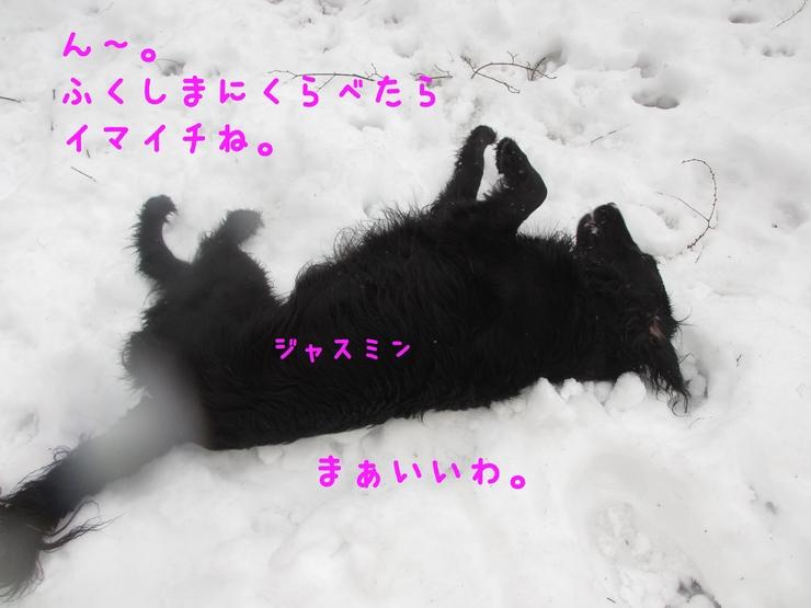 c0237824_14354363.jpg