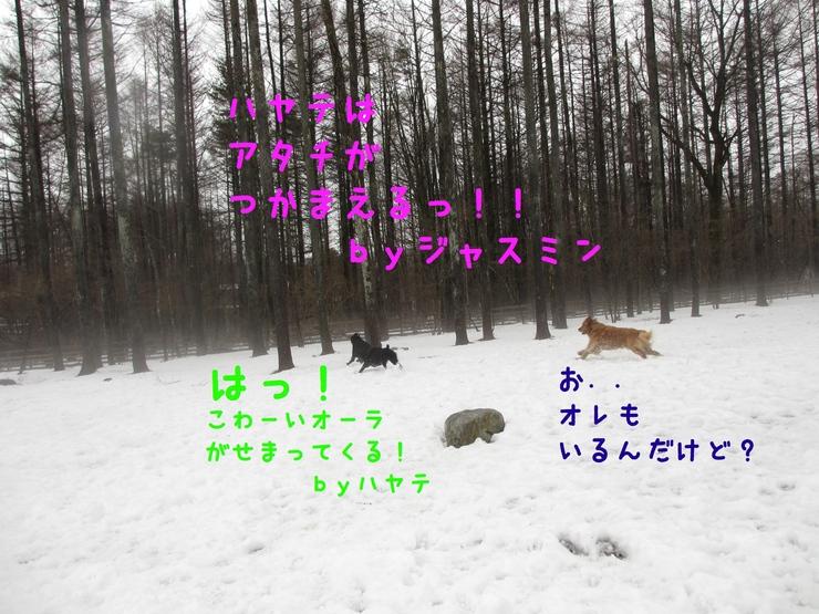 c0237824_14573691.jpg