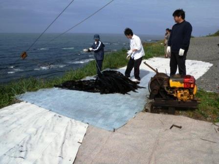 北海道えりも町「えりも地域力発掘協議会」被災地支援活動 其の二_b0206037_16454887.jpg