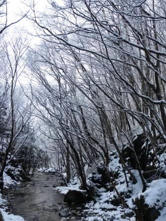 見納め?雪の龍泉洞_b0206037_9191266.jpg