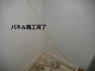 f0031037_1953781.jpg