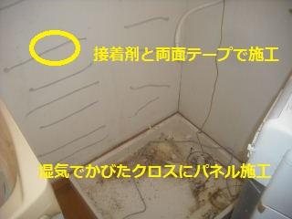 f0031037_1954429.jpg