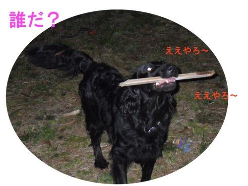 c0238473_2121588.jpg