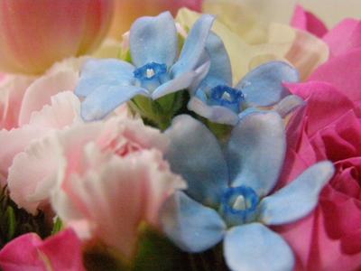 d0233891_9331049.jpg