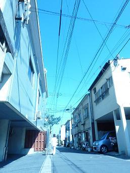 お散歩日和_d0165410_1456527.jpg