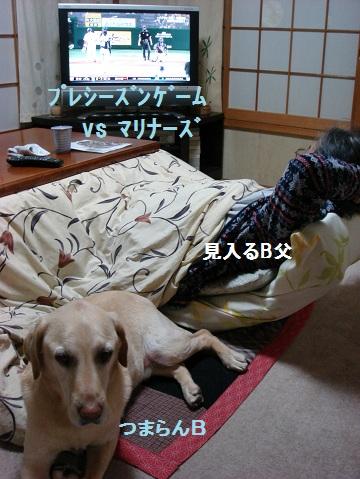 b0226221_20253100.jpg