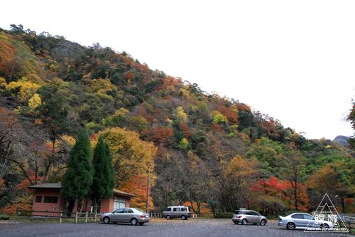 136 八重滝 ~山奥にある八つの滝~_c0211532_12325944.jpg
