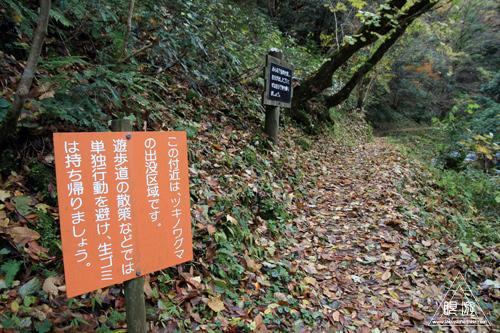 136 八重滝 ~山奥にある八つの滝~_c0211532_1257555.jpg