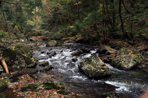 136 八重滝 ~山奥にある八つの滝~_c0211532_1303418.jpg