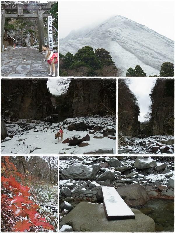 大山 - 初冬 -_b0025947_1612861.jpg