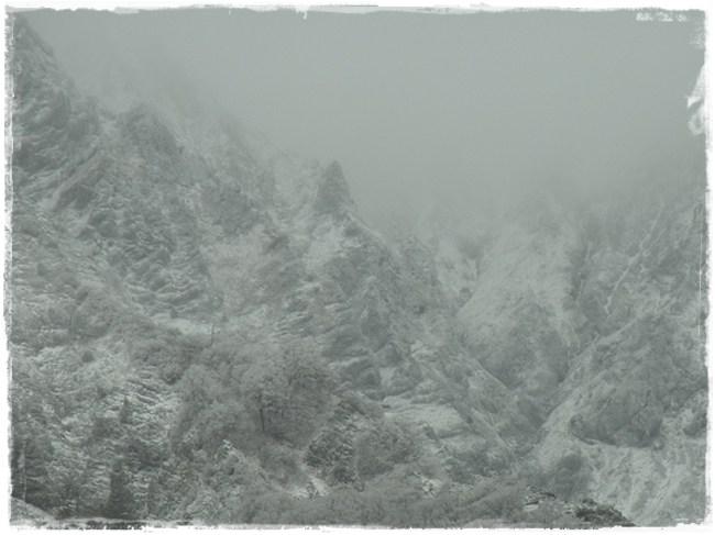 大山 - 初冬 -_b0025947_18355914.jpg