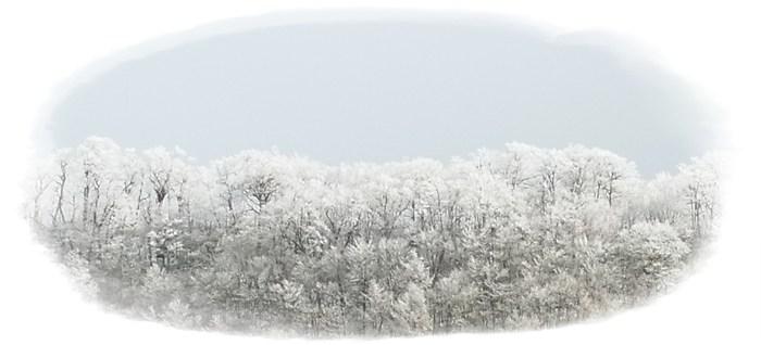 大山 - 初冬 -_b0025947_18362039.jpg