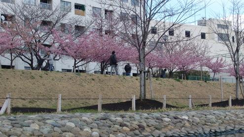 今シ-ズン初_c0249569_20434932.jpg