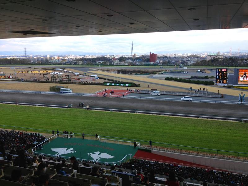 中京競馬場 馬の応援 _a0160581_163582.jpg