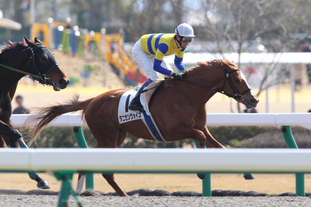 2012年3月25日 高松宮記念_f0204898_716065.jpg